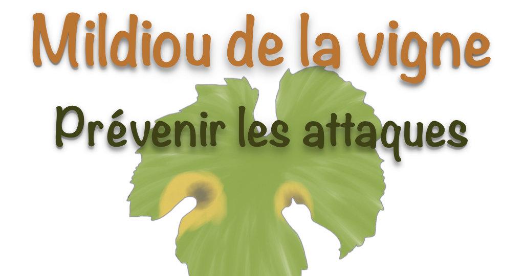 Logo mildiou vigne.001